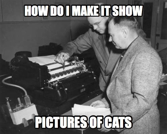 MemeExample_Cats.png