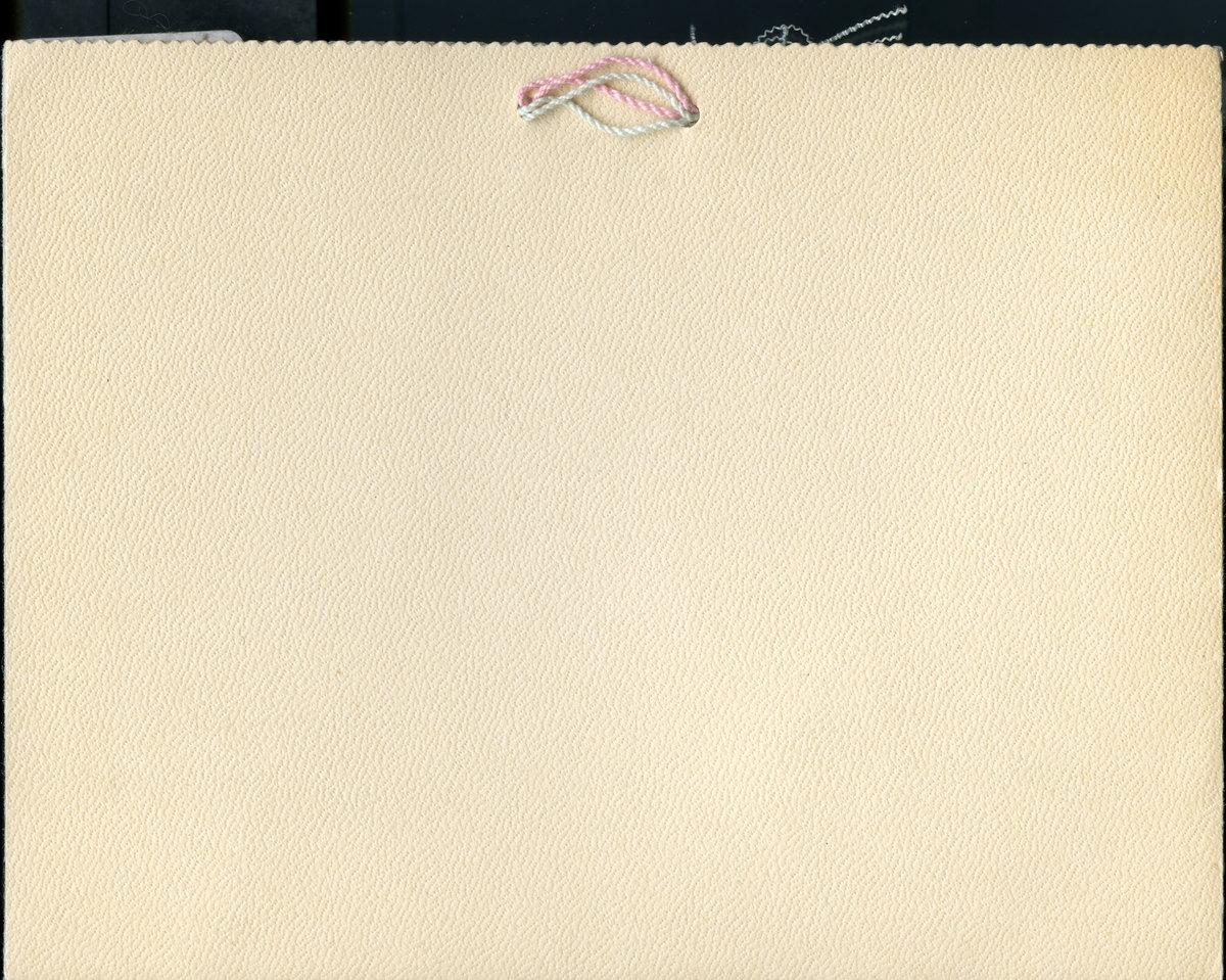 SCAUA13p02s01-1898-005_Final.jpg