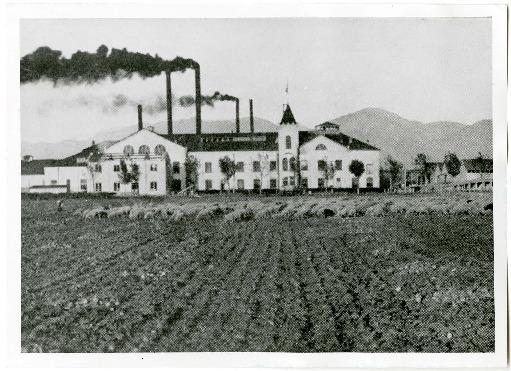 Photo and Statistics of Logan, Utah's Amalgamated Sugar Beet Factory, 1913<br />