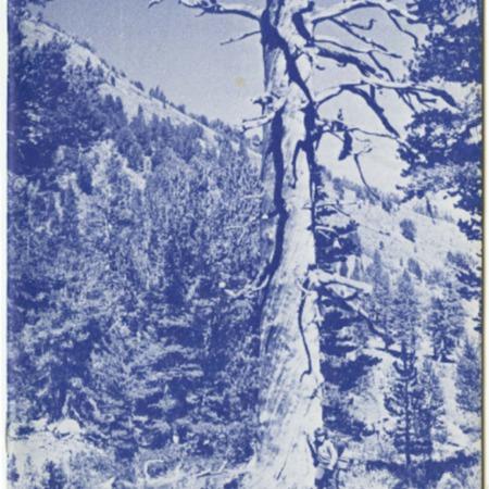 SCABOOK072-S09-1975-Cata01-001.pdf