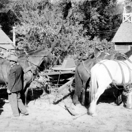 SCAFOLK067-DNO-0062_RSLKWJ332a-Horse-Threshing.jpg