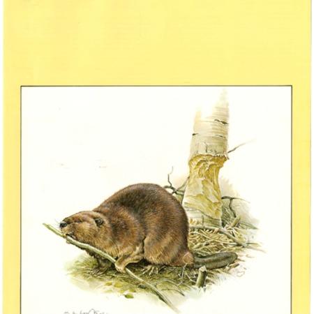 SCABOOK072-C03-1977-Cata04-001.pdf