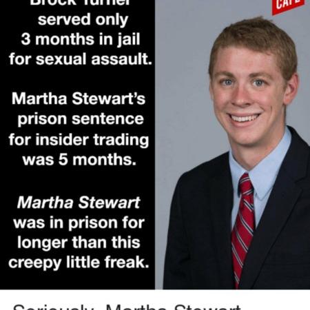 brock turner martha stewart.png