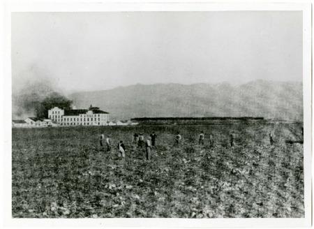 Photo and Statistics of Lewiston, Utah's Amalgamated Sugar Beet Factory, 1913<br />