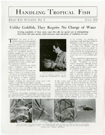 """Railroad Bulletin, """"Handling Tropical Fish,"""" Right Way Bulletin No. 8, 1931<br />"""