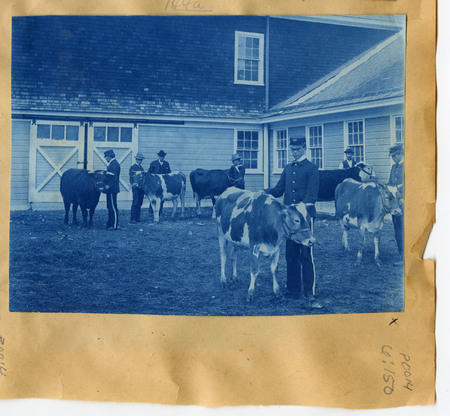 1896-1916 Agricultural College of Utah Cyanotype 10